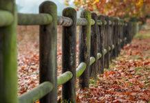 Czy ogrodzenia PCV mogą zastąpić płoty z surowców naturalnych?